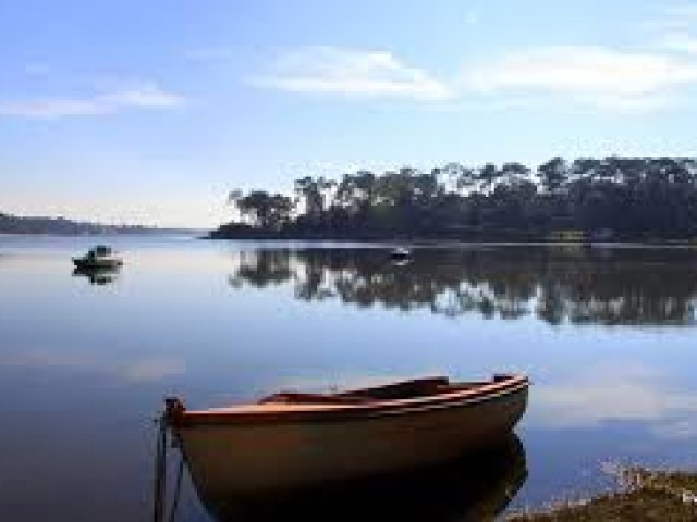 La Tetrade Côté Lac